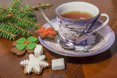 Cup Of Tea And Gingerbread Cookies. With sugar and spuce tree branch Stock Image