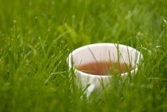 Cup of tea on the grass lawn with copyspace. Cup of tea on the grass lawn. with copyspace Royalty Free Stock Image