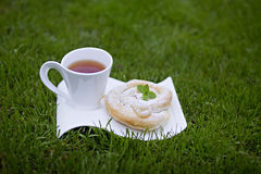 Cup of tea and greek vanilla swirl. Sponge cake and cup of tea on the grass Stock Photos
