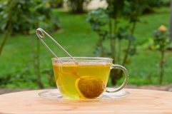 Cup of tea in green garden Stock Image