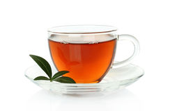 Cup of tea with green leaves Stock Image