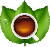 Cup With Tea And Green Leaves. Vector Stock Images