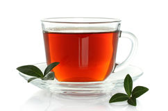 Cup of tea with green leaves Royalty Free Stock Image