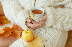 Cup of tea in the hands of a girl in a white sweater Stock Image