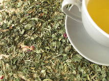 Cup of tea on herbs Stock Photo