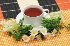 Cup of tea with herbs Royalty Free Stock Photo