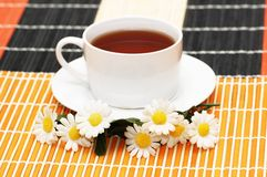Cup of tea with herbs and dais. Cup of tea  with herbs and daisies Royalty Free Stock Photo