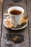 Cup of tea with herbs and spices Royalty Free Stock Photography