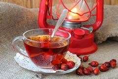Cup of tea from the hips Stock Images
