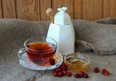 Cup of tea from the hips Stock Photography