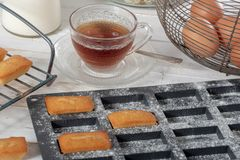 Cup of tea with homemade financier cakes. A cup of tea with homemade financier cakes stock photography