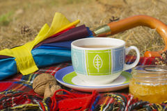 Cup of tea with honey and umbrella at autumn (fall) Royalty Free Stock Image