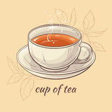 Cup of tea. Illustration with cup of tea on color  background Royalty Free Stock Photos