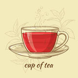 Cup of tea. Illustration with a cup of tea on color background Royalty Free Stock Photo