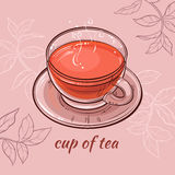 Cup of tea. Illustration with a cup of tea on color background Royalty Free Stock Photography