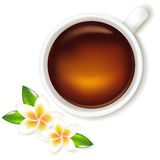 Cup Of Tea Illustration With Frangipani. Vector Stock Photo
