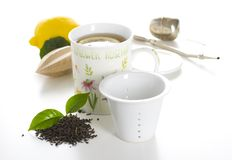 Cup of tea isolated Royalty Free Stock Photo