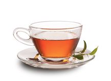 Cup of tea isolated on white background Royalty Free Stock Photography