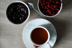 Cup of tea with jam and cranberries on the table royalty free stock images