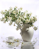 Cup of tea and jasmin bouquet in a ceramic vase on a white backg. Round, Bouquet in a ceramic vase stock image