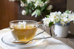 Cup of tea with jasmine and blooming jasmine branch Stock Photography