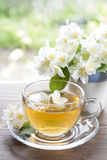 Cup of tea with jasmine and blooming jasmine branch Stock Photos