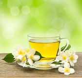Cup of tea with jasmine flowers. On wooden table over blurred green background royalty free stock images