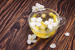Cup of tea with jasmine and linden flower Stock Image