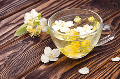 Cup of tea with jasmine and linden flower Royalty Free Stock Photos