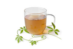 Cup of tea with jiaogulan herb. On white background stock photos