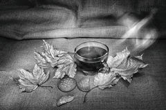 Cup of tea with kukies in black and white. Set in the autumn season royalty free stock photo