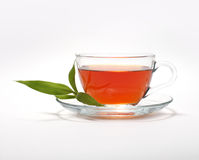 Cup with tea and leaf Stock Images