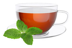 Cup tea and leaves of mint. Stock Photos