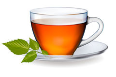 Cup of tea with leaves. Vector. Stock Images
