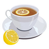 Cup of tea and lemon. Hand drawn illustration of cup of fragrant black tea with lemon, isolated on white for your design Stock Photos