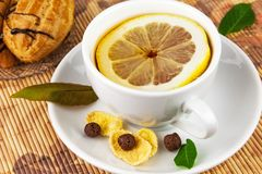 Cup of tea with lemon and cakes. Cup of tea with slice cut of lemon on plate, cakes and leaves on the mat Stock Image