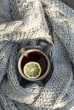 Cup of tea with lemon, knitted scarf near at wood background outdoor. Outdoor composition. White cup with tea and lemon, knitted scarf and nuts near, on wood stock photography