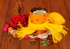 Cup of tea with a lemon and other anti-catarrhal Stock Images