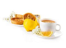 Cup of tea with lemon and pastries Stock Image