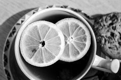 A cup of tea with lemon pieces - black and white. Royalty Free Stock Image