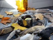 Cup of tea with a lemon, a  scarf and autumn leaves Stock Photos