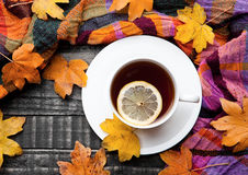 Cup of tea with lemon with scarf and autumn leaves. On wooden background royalty free stock photo