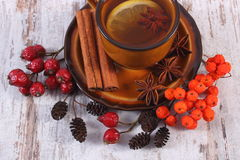 Cup of tea with lemon, spices and autumn decoration on wooden background Royalty Free Stock Image