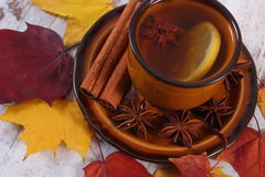 Cup of tea with lemon, spices and autumnal leaves on wooden background Royalty Free Stock Photo
