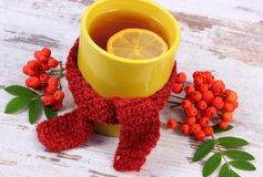 Cup of tea with lemon wrapped woolen scarf, warming beverage for flu, autumn decoration Royalty Free Stock Images