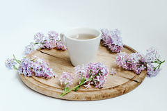 Cup of tea with lilac spring flowers on the wood table. White background stock photos