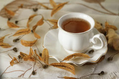Cup of tea with linden flowers Royalty Free Stock Photos