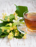 Cup of tea and linden flowers Stock Photo