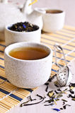 Cup with tea liquid Royalty Free Stock Photography