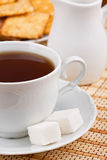 A cup of tea with a lump sugar and crackers Royalty Free Stock Image